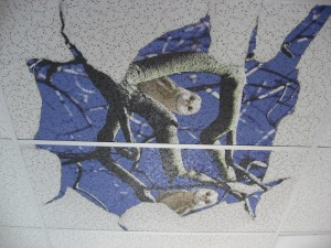 Flatbed printing on ceiling tiles