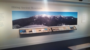 museum display photo