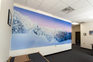 corporate lobby wall mural