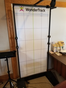 grid for checking posture
